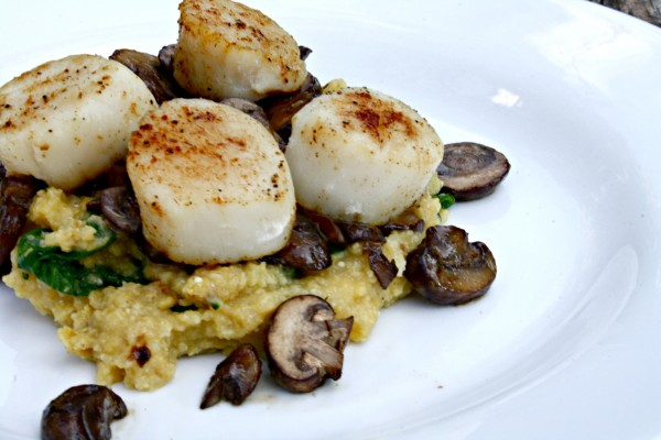 Scallops with spinach polenta
